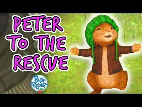 Peter Rabbit - Peter to the Rescue | Day of Friendship | Compilation