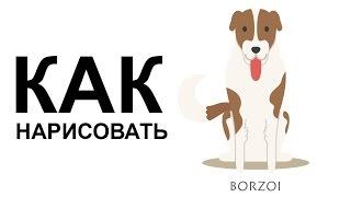 Рисунки собак поэтапно. КАК НАРИСОВАТЬ СОБАКУ карандашом(Как нарисовать собаку поэтапно карандашом для начинающих за короткий промежуток времени. http://youtu.be/THmdPcPjgGM..., 2015-06-25T06:47:22.000Z)
