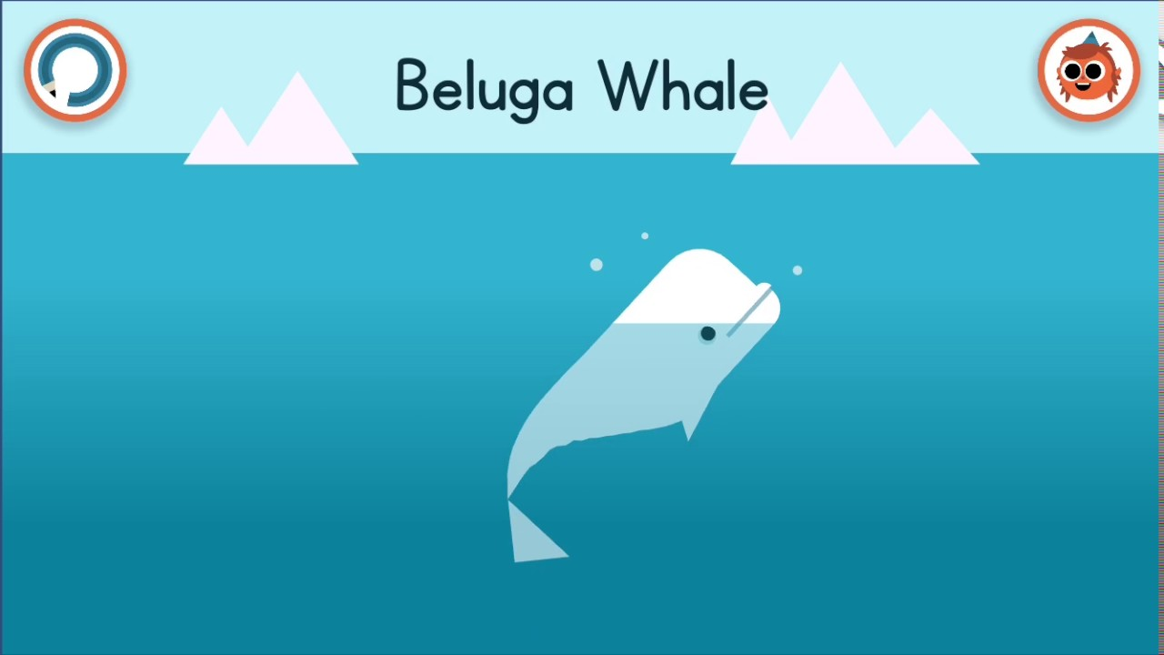 how to draw a beluga whale arties world