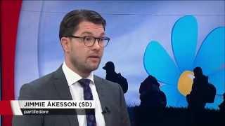 TV4 Nyheterna - Utfrågningen - Jimmie Åkesson (2015.11.11)