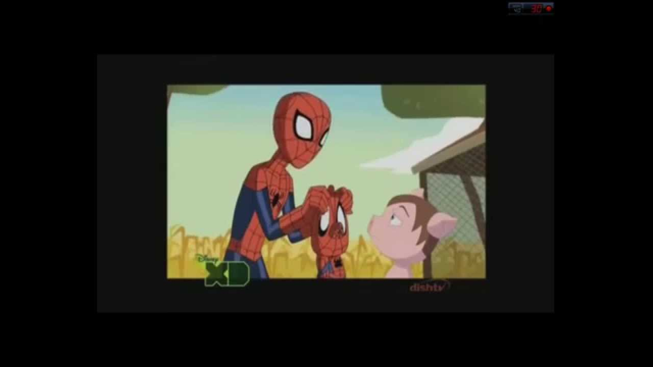 ultimate spider man season 3 spidey meets spider ham youtube. Black Bedroom Furniture Sets. Home Design Ideas