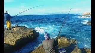 vlog 12 صيد سمك تاغزالت وشرغو
