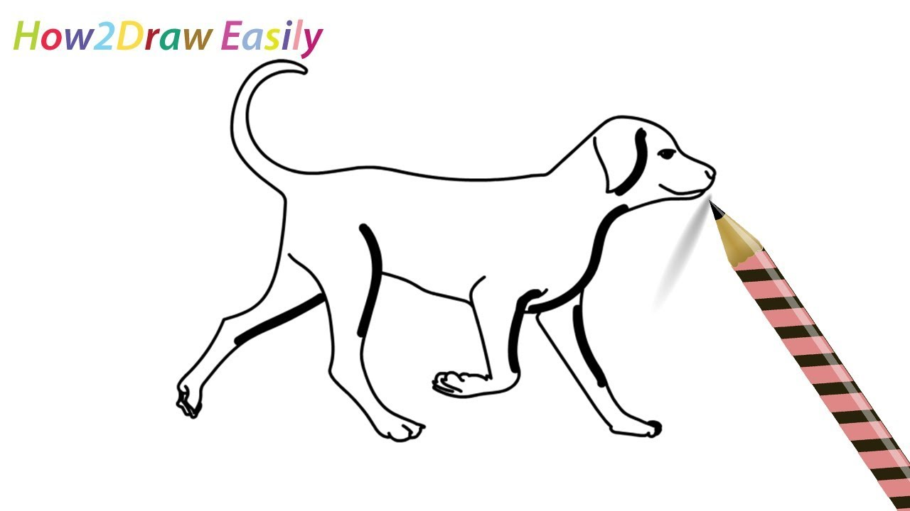How To Draw A Dog Walking Easy Drawing Step By Step For Beginners