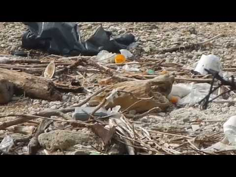 plastic pollution on Brijuni islands Croatia one