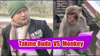 Takme Buda VS Monkey | बाजेको जाँगर  र पशुपतिका बाँदर  | Comedy in Pashupatinath |