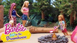 Çok da Yapmacık! | Barbie LIVE! In The Dreamhouse | Barbie