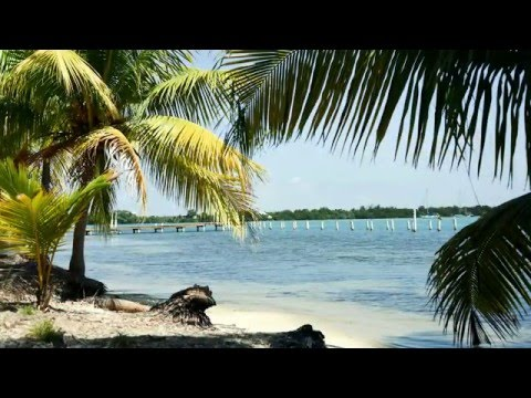 Belize: Study Abroad 2016