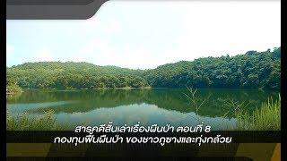 สารคดีสั้นเล่าเรื่องผืนป่า : ตอนที่ 8 กองทุนฟื้นผืนป่า ของชาวภูซางเเละทุ่งกล้วย