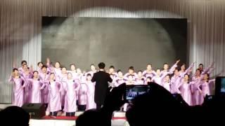 Nobody choir