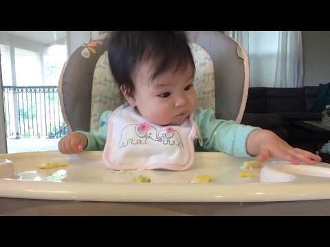 Baby Led Weaning (BLW) Day 35 Scrambled Egg [& Avocado] (6m4w)