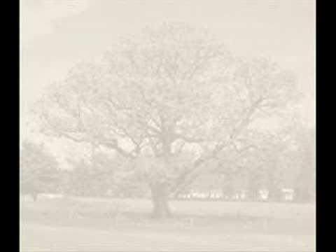 """KEANE - """"Walnut Tree"""""""