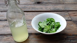Homemade Rice vinegar