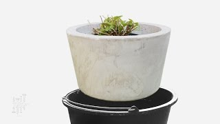 Large Planter Made With 2 Buckets - DIY Concrete