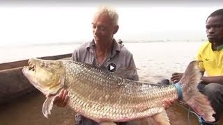 14 Most Difficult Fish To Catch