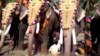 Pattath Sreekrishnan - Thechikottukavu Ramachandran - Nanu Ezhuthachan sreenivasan