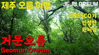 Jeju Oreum Trip from the Air 0…