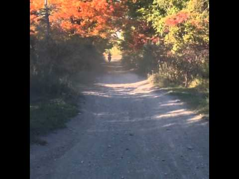 Newtonville Ontario Dirt bike Trails