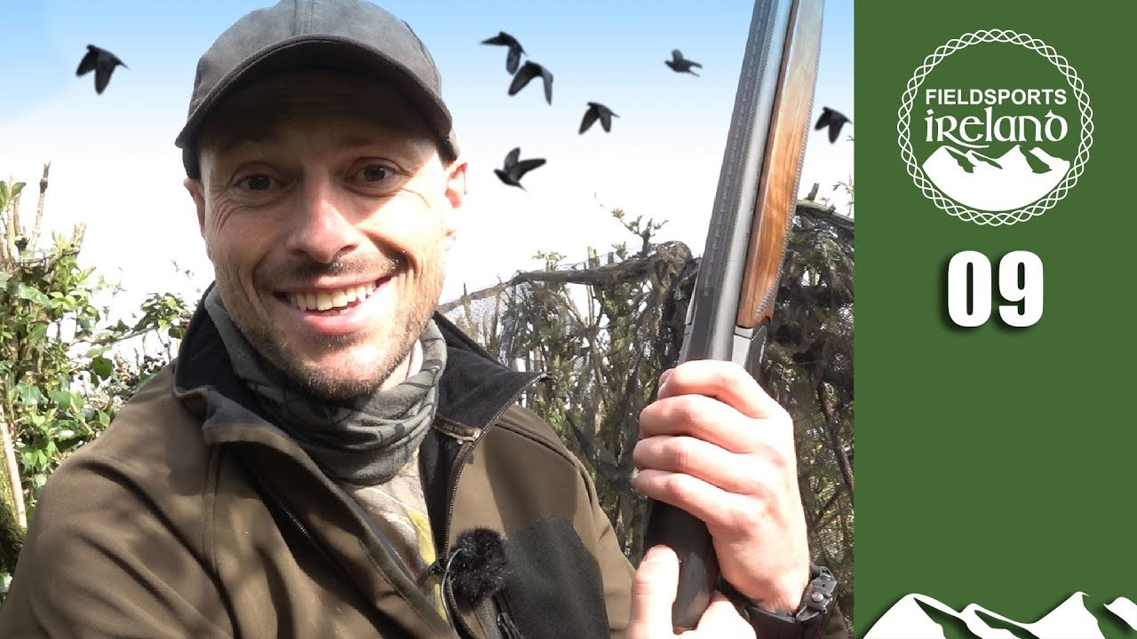 Shooting grey crows  - Fieldsports Ireland, episode 9