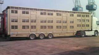 Camion Betailliere