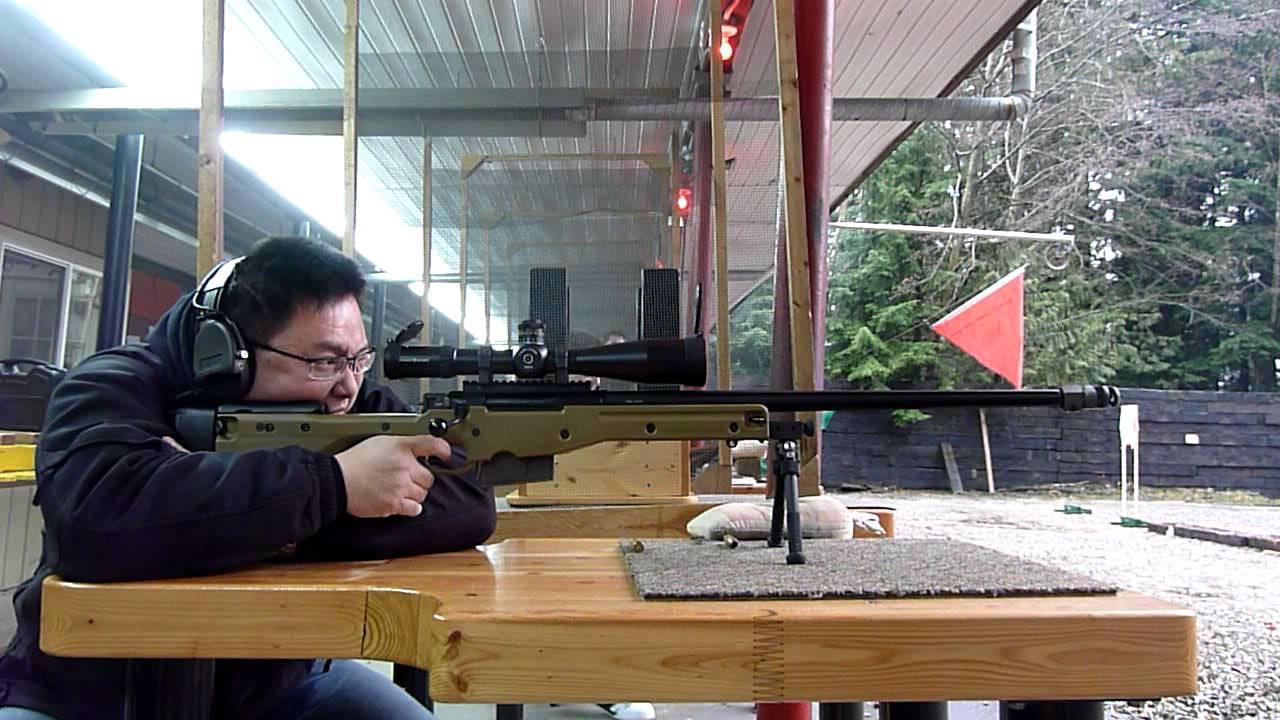 Arctic Warfare Magnum: Accuracy International L115A3 ...