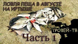 Рыбалка на фидер, ловля леща в августе 2018 на Иртыше. Часть 1 Экшнсъемка.