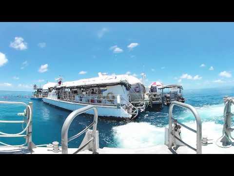 Reef Magic Cruises - 360 Degree Video Of Marine World