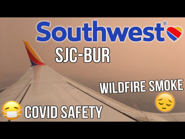 TRIP REPORT: San Jose to Hollywood Burbank WN1954 | Southwest Airlines | Boeing 737-800