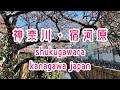 【駅前散策・293】南武線・宿河原 の動画、YouTube動画。