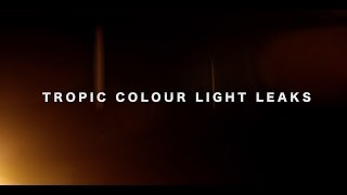 Tropic Colour- 4k Light Leaks