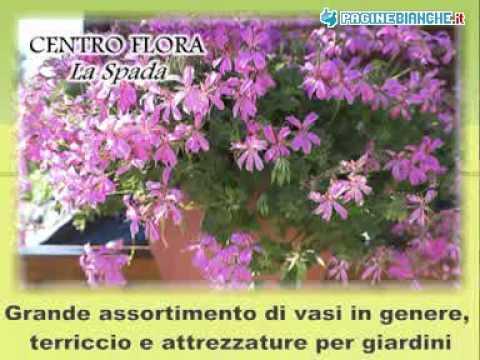 purchase cheap 9f9f3 b0b87 CENTRO FLORA LA SPADA AMEGLIA (LA SPEZIA)