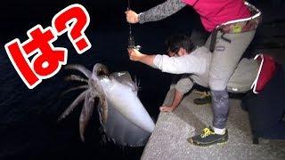 通称「デビル」と呼ばれる巨大イカが釣れてしまった… thumbnail