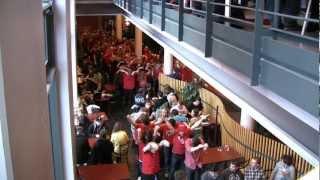 Flashmob - Universitetsdagarna Uppsala universitet thumbnail