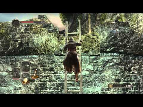 Dark Souls 2 - Dual Wield Rapier with Power Stance in 20 Minutes