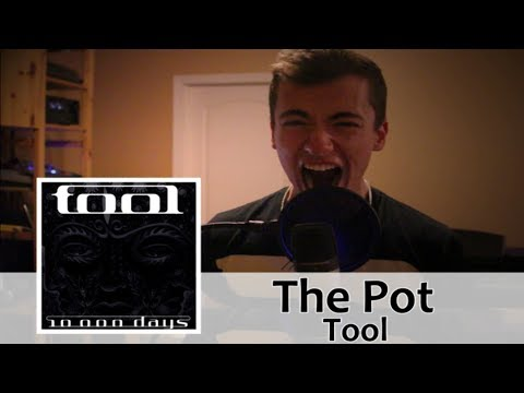 The Pot  Tool  Vocal   Victor Borba