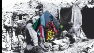 За награды,за Афган,за ребят.