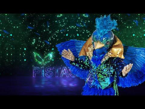 #QuetzalEs ¿Cuál es el verdadero mundo de Quetzal? | ¿Quién es la Máscara? 2020
