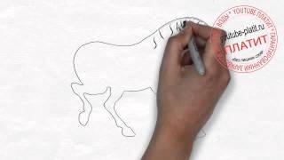 Как нарисовать лошадь детям поэтапно карандашом(Как нарисовать лошадь поэтапно простым карандашом за короткий промежуток времени. Видео рассказывает..., 2014-06-28T11:45:06.000Z)