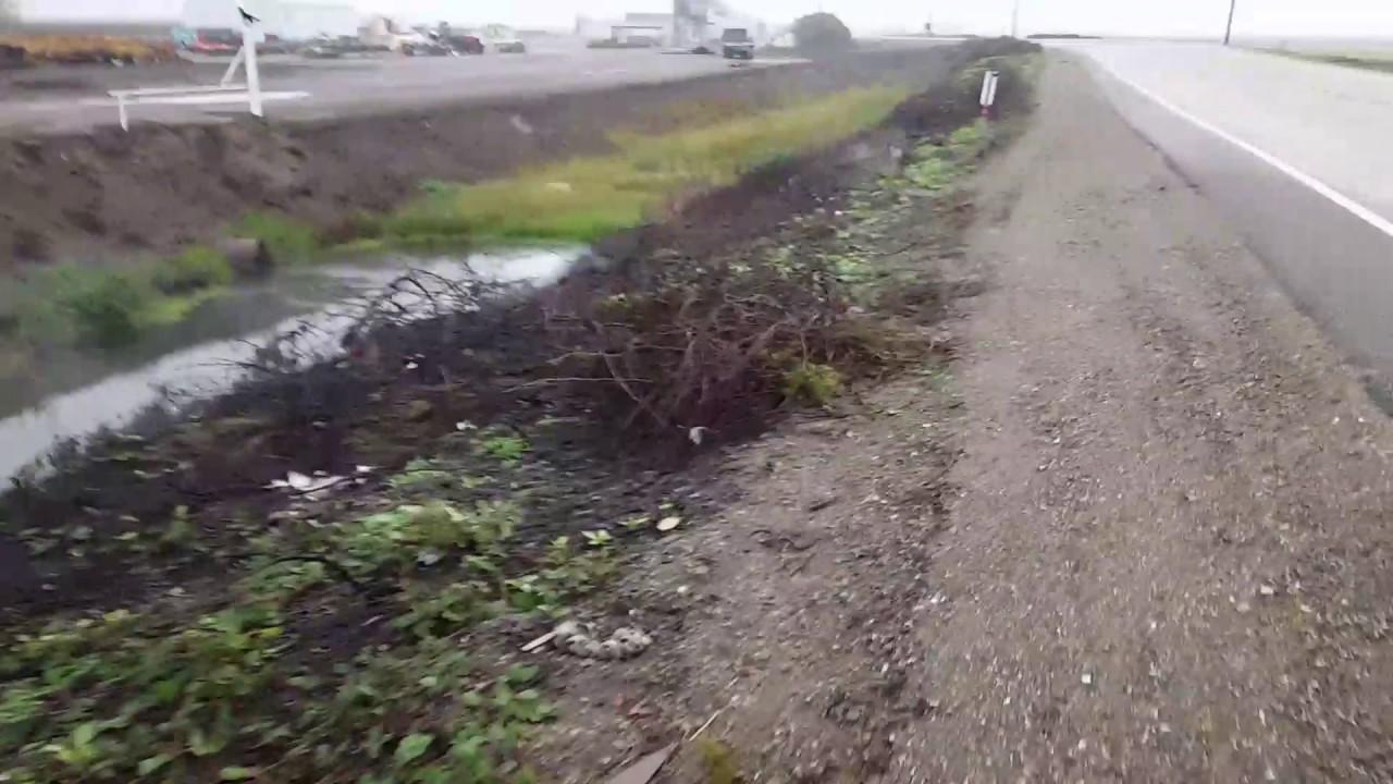 What burning peat moss looks like - YouTube