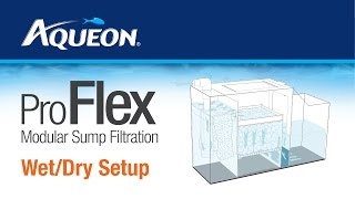 ProFlex Modular Sump Filtration: Wet/Dry Set Up