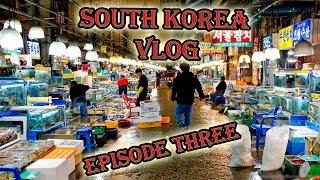 MASSIVE Korean Fish Market - Seoul, South Korea Vlog - Episode Three