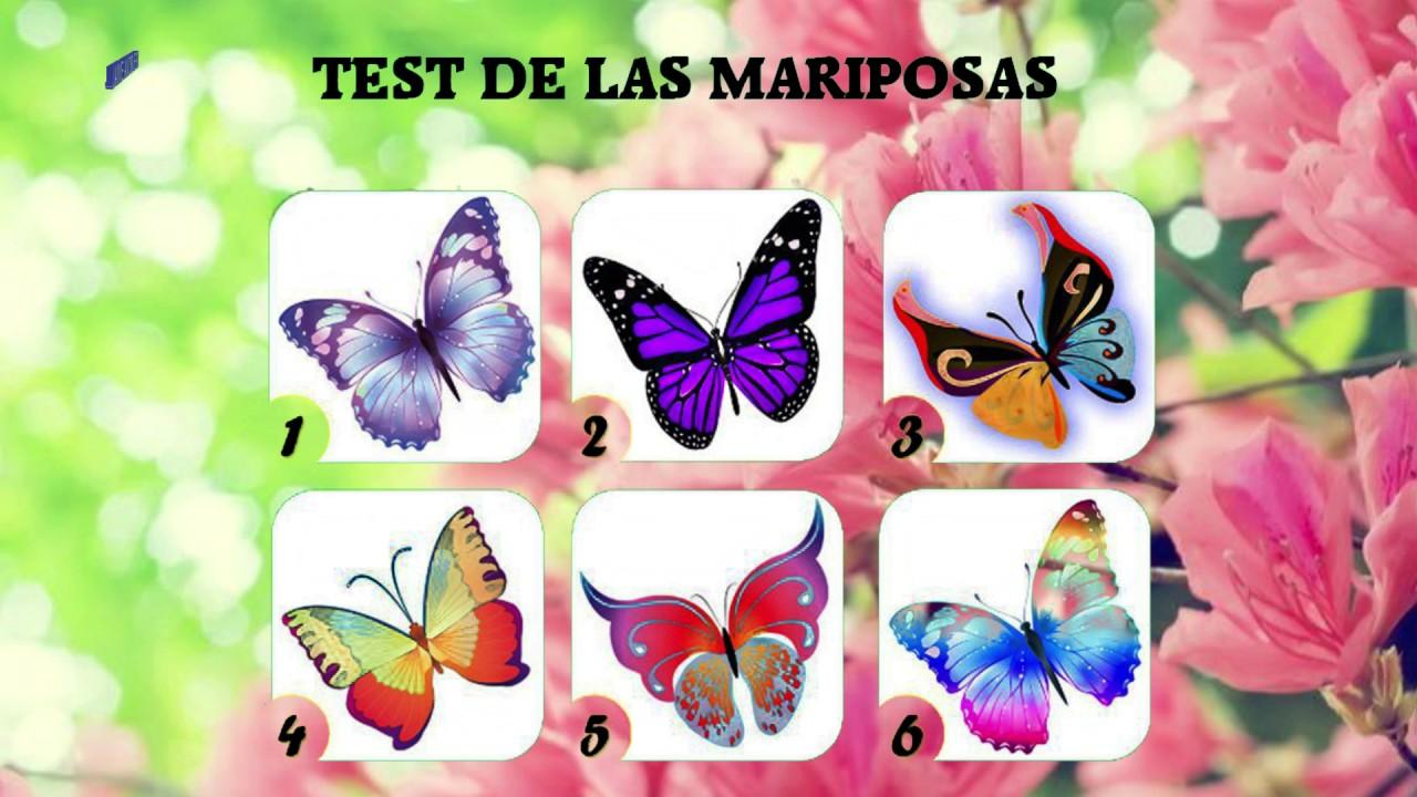 Elige Tu Mariposa Favorita Y Averigua El Mensaje Que Tiene Para Ti