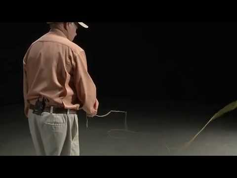 Temple Fork Outfitters -- The Office Rod