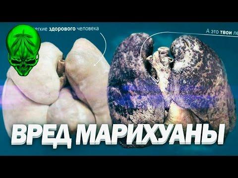 Читать онлайн - Чудаков Александр Павлович. Ложится мгла