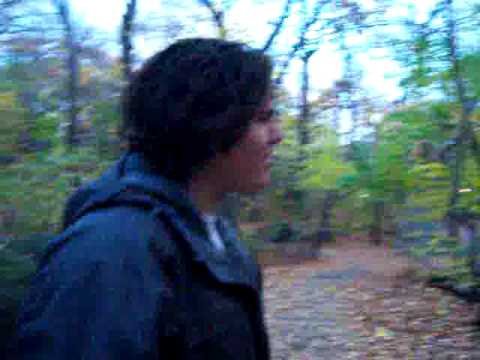 """Central Park's """"The Ramble"""""""
