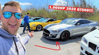 GUY IN A 1,000HP 2020 GT500 Says He Can BEAT My ZR1!!! (Typical Mustang Owner)