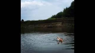 Голая Любовь Толкалина обнаженной плавает