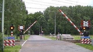 Spoorwegovergang Maastricht // Dutch railroad crossing