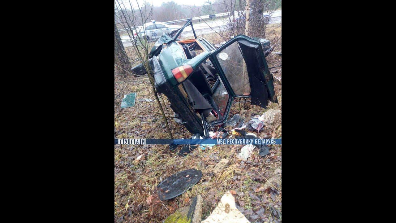 Под Полоцком Volkswagen Passat врезался в дерево: погиб пассажир, есть травмированные
