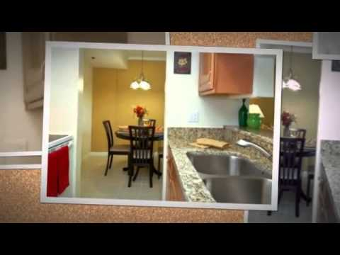 Willow Wood 2855 West Commercial Blvd. Fort Lauderdale, FL 33309  877-287-1507