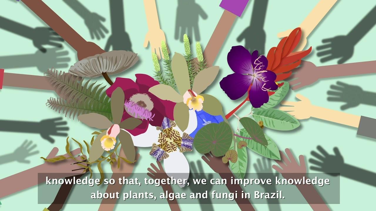Projeto Flora do Brasil 2020 completa 10 anos